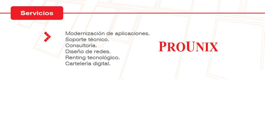 Servicios Prounix
